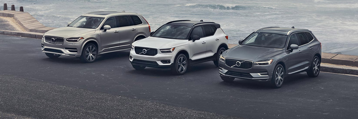 volvo model line up in a parking lot with a beach in the background